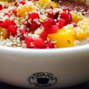 Chiapudding med mango och granatäpple i vit skål