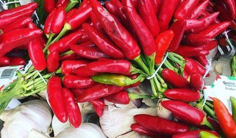 Röd chili och vitlök i närbild