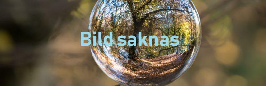 glasklot på stubbe med texten Bild saknas