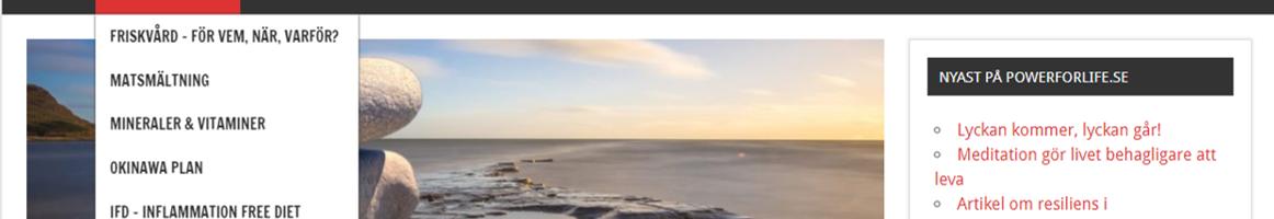 Printscreen från powerforlife.se